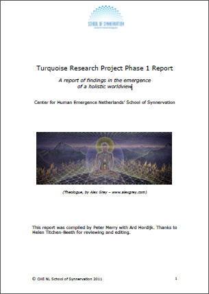 Download the report of the first phase of the turquoise research project